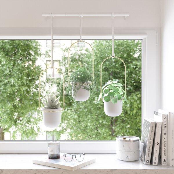 Ceiling Hanging Decor Wayfair