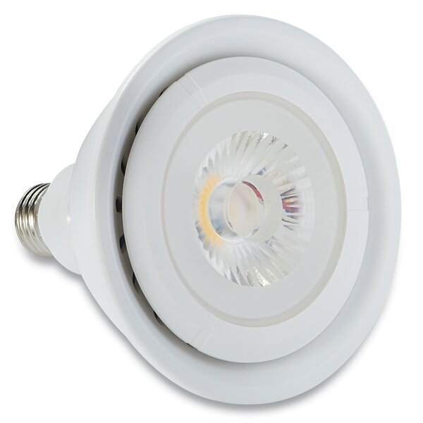 100W Halogen Light Bulb by Verbatim Corporation