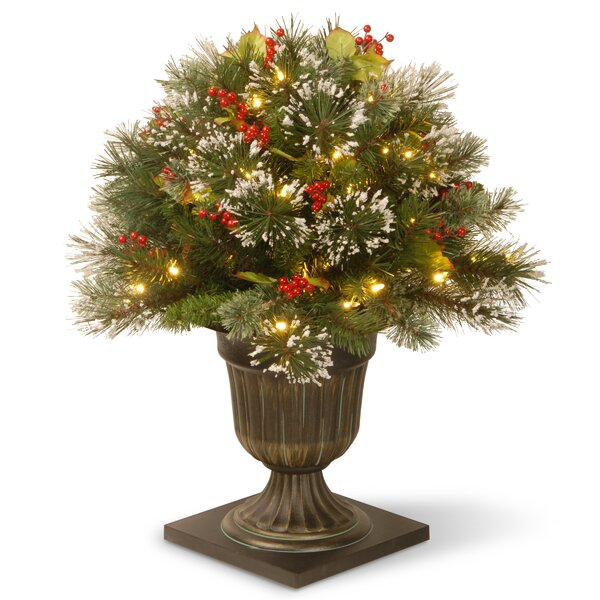 Wintry Pine Pre-Lit Porch Bush Foliage Topiary in Urn by National Tree Co.