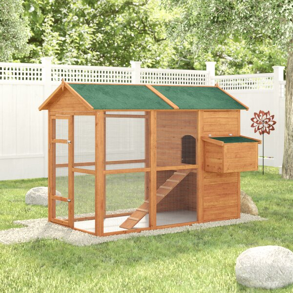 Auggie Deluxe Large Backyard Chicken Coop with Out