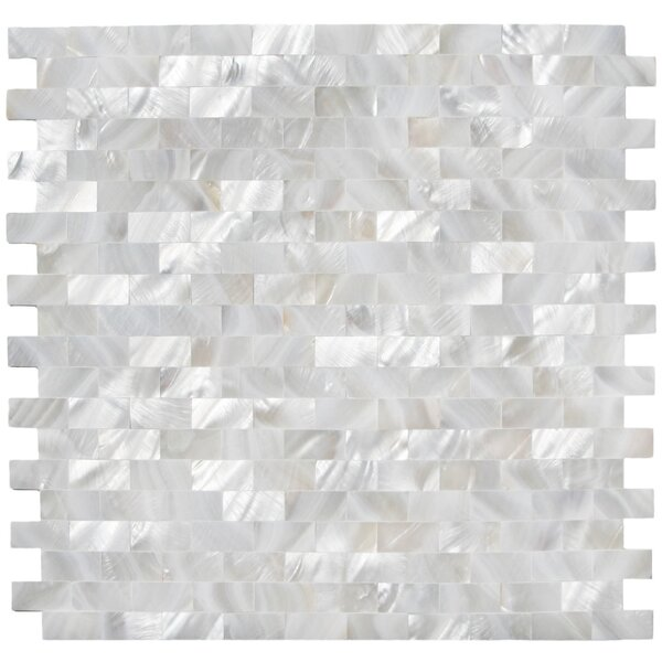 Arctic 0.5 x 1 Seashell Mosaic Tile in White by CNK Tile