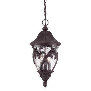 Low priced Berumen 3-Lights Outdoor Pendant By Fleur De Lis Living