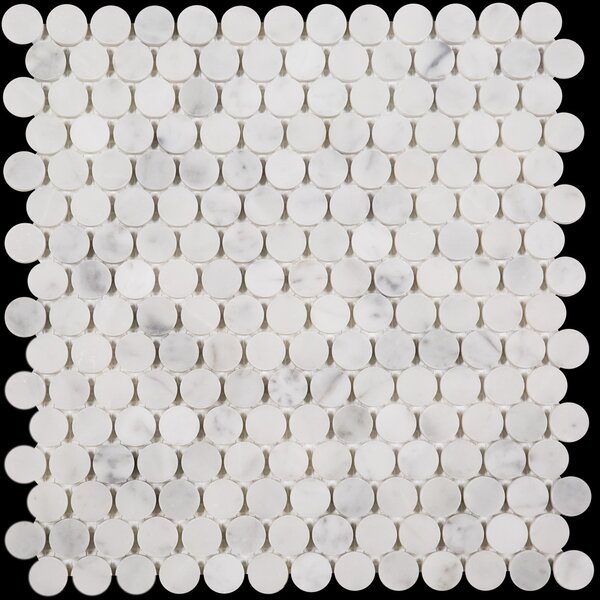Penny Round 0.75 x 0.75 Marble Mosaic Tile in Bianco Carrara by Ephesus Stones