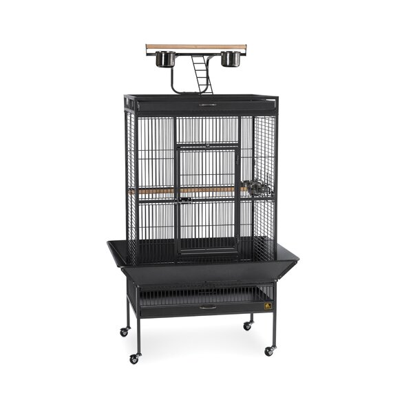 Signature Series Large Bird Cage by Prevue Hendryx