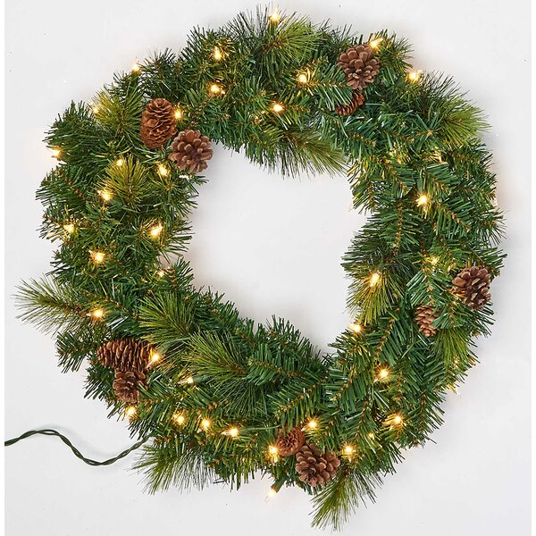 Pine and Cone 22 LED Lighted Plastic Wreath by The Holiday Aisle