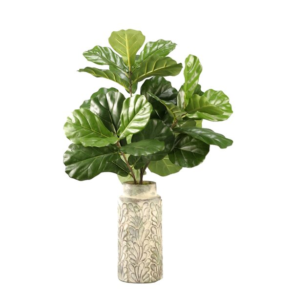 Fiddle Leaf Fig Branches Floor Plant in Decorative Vase by Bay Isle Home