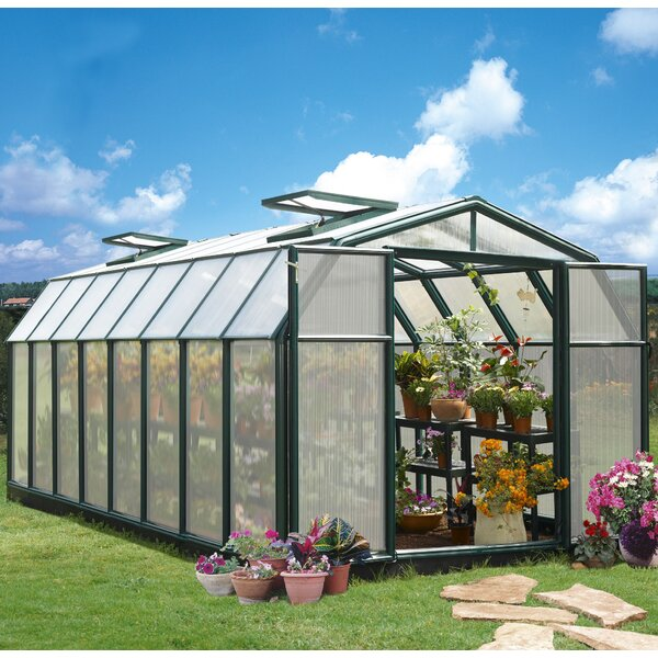 Hobby Gardener 2 Twin Wall 8 Ft. W x 16 Ft. D Greenhouse by Rion Greenhouses
