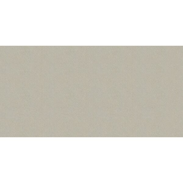 Element 12 x 24 Porcelain Field Tile in Matte Argent by Walkon Tile