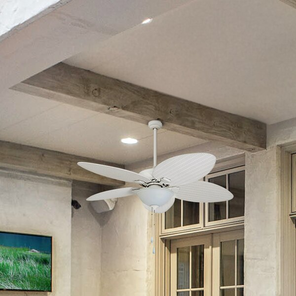 52 Cosgrave Palm Tropical 5 Blade Outdoor LED Ceiling Fan by Bay Isle Home