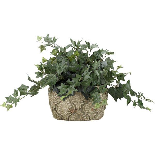 Ceramic Floor Ivy Plant in Planter by Fleur De Lis Living