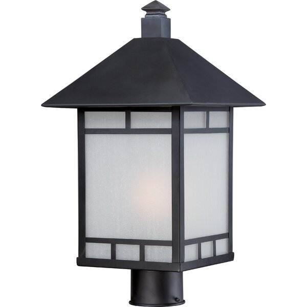 Oralia Outdoor 1-Light Lantern Head by Bloomsbury Market