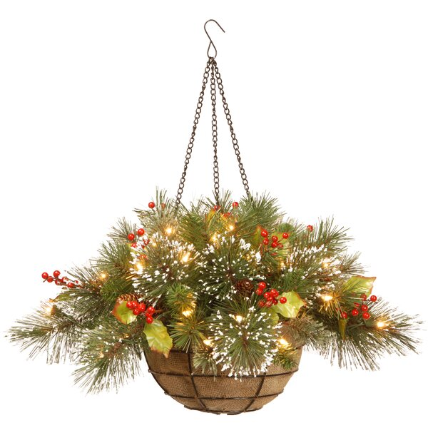 Pine Pre-Lit Round Hanging Basket by Three Posts