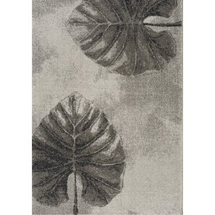 Price comparison Post Two Leaves Gray/Black Area Rug By Bay Isle Home