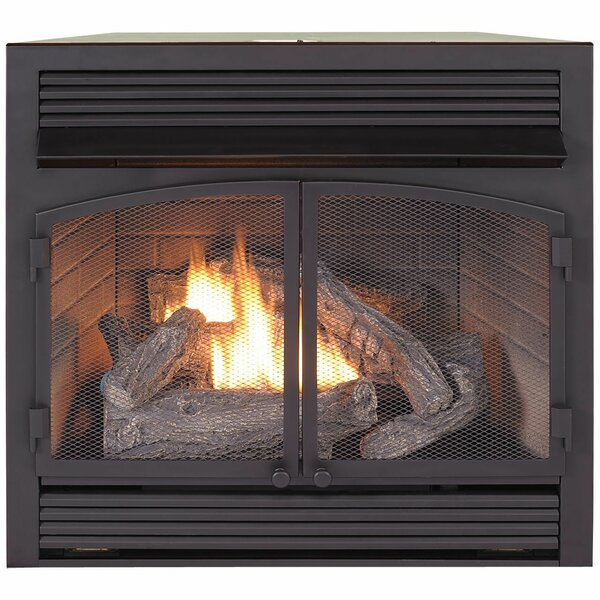 Vent Free Recessed Natural Gas/Propane Fireplace Insert W/Remote By Duluth Forge