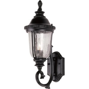 Ehrhardt 1-Light Outdoor Sconce