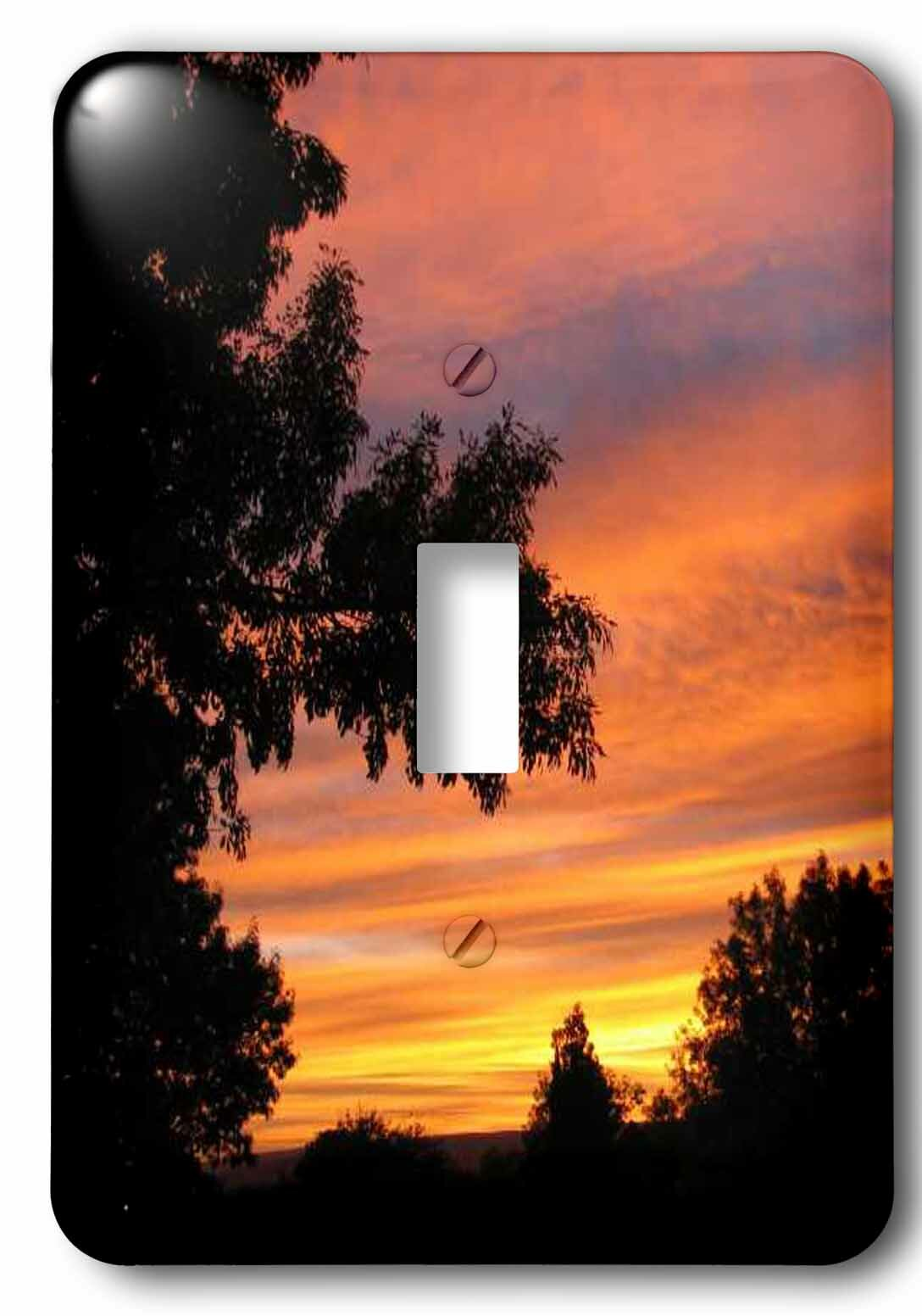 3drose Sunset 1 Gang Toggle Light Switch Wall Plate Wayfair