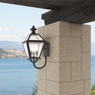 Buying Hart 3-Light Outdoor Sconce By Darby Home Co