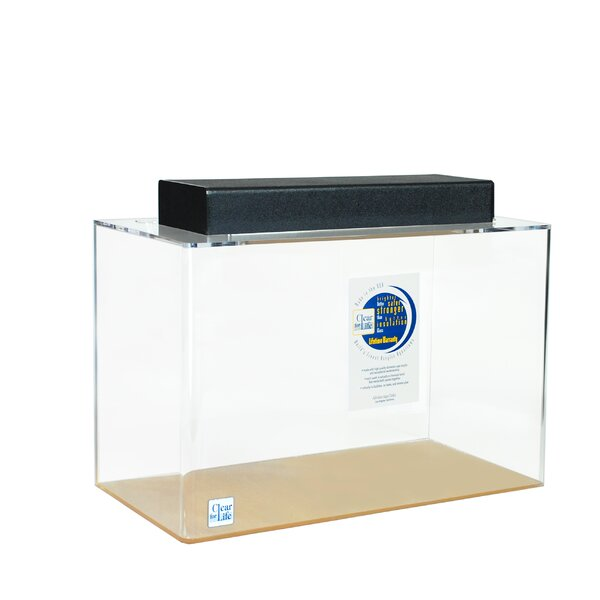 Goldie Aquarium Tank by Archie & Oscar