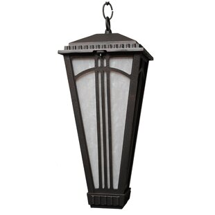 Reviews Petrey 1-Light Outdoor Hanging Lantern By Alcott Hill