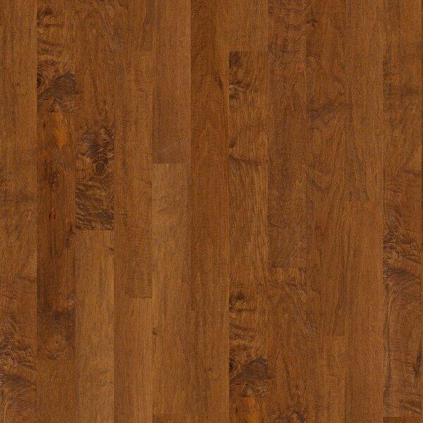 Aurora 5 Engineered Maple Hardwood Flooring in Barrington by Shaw Floors