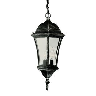 3-Light Outdoor Hanging Lantern By TransGlobe Lighting Outdoor Lighting