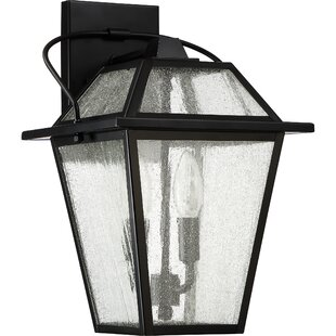 Beardsley 2-Light Outdoor Wall Lantern By Darby Home Co