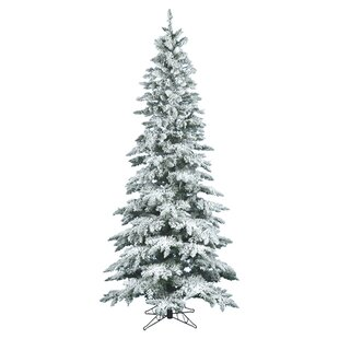 flocked utica 65 whitegreen fir trees artificial christmas tree with stand - White Christmas Trees On Sale