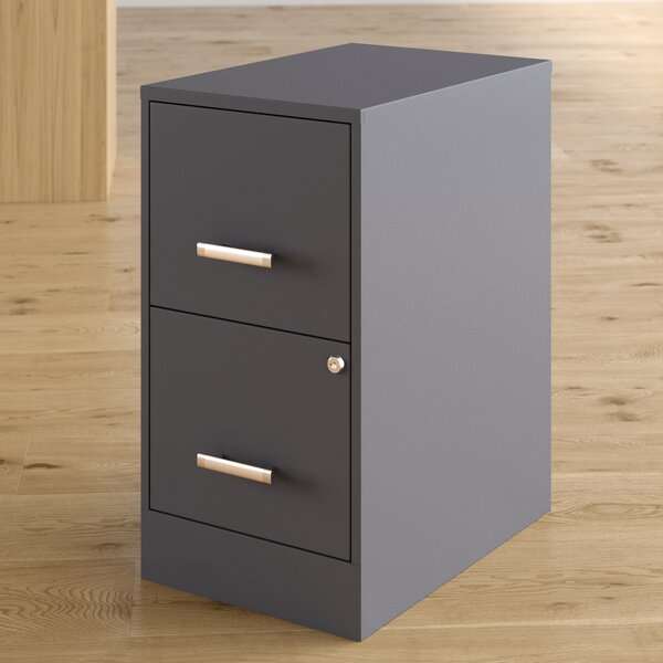 Wooster 2 Drawer Vertical Filing Cabinet by Wrought Studio
