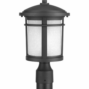 Best Chamberlain Traditional 1-Light Lantern Head By Bloomsbury Market