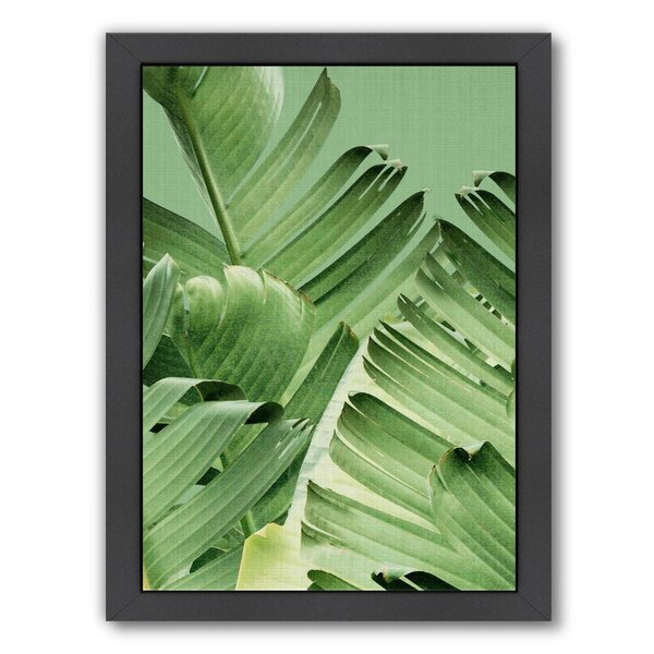 Tropical Leaves 2 Framed Photographic Print by Bay Isle Home