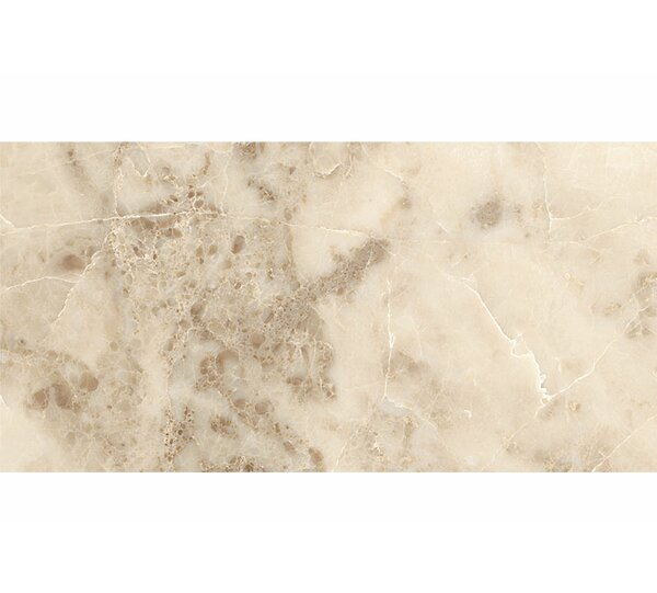 12 x 24 Marble Field Tile in Cappuccino Polished by Parvatile