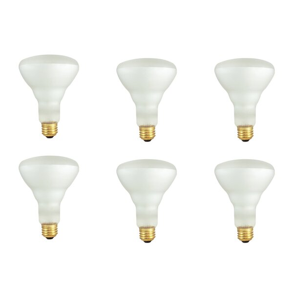 E26 Dimmable Incandescent Light Bulb Frosted (Set of 12) by Bulbrite Industries