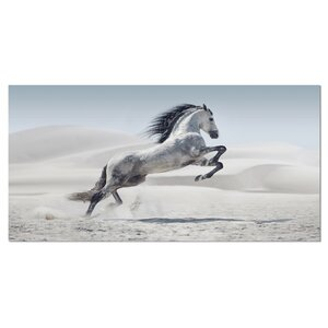 'Galloping White Horse' Photographic Print on Wrapped Canvas by Design Art