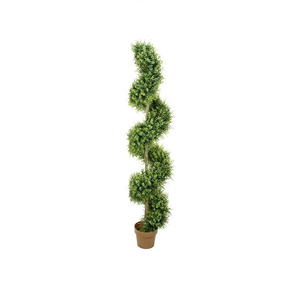 Two-Tone Boxwood Spiral Topiary in Pot by Northlight Seasonal