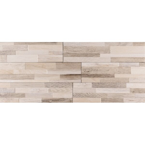 Rainforest Ledger 6 x 24 Porcelain Field Tile in Gray by MSI