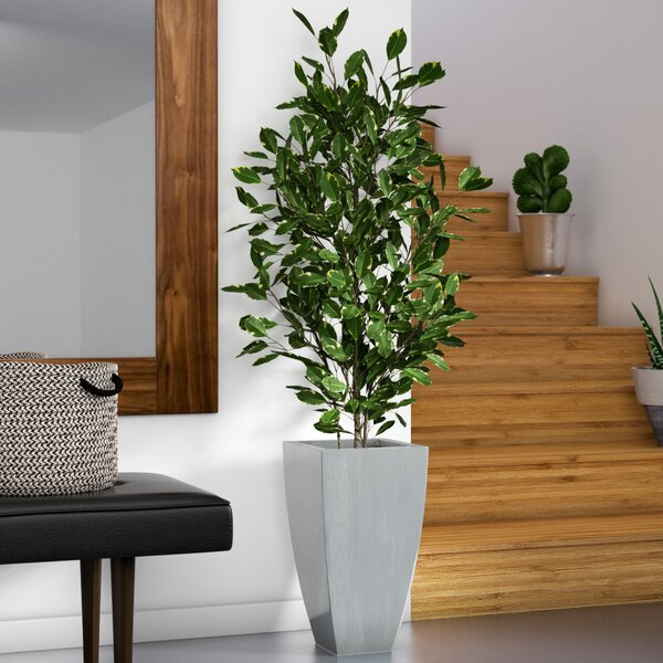 Synthetic Fabric Ficus Tree in Planter by Zipcode Design