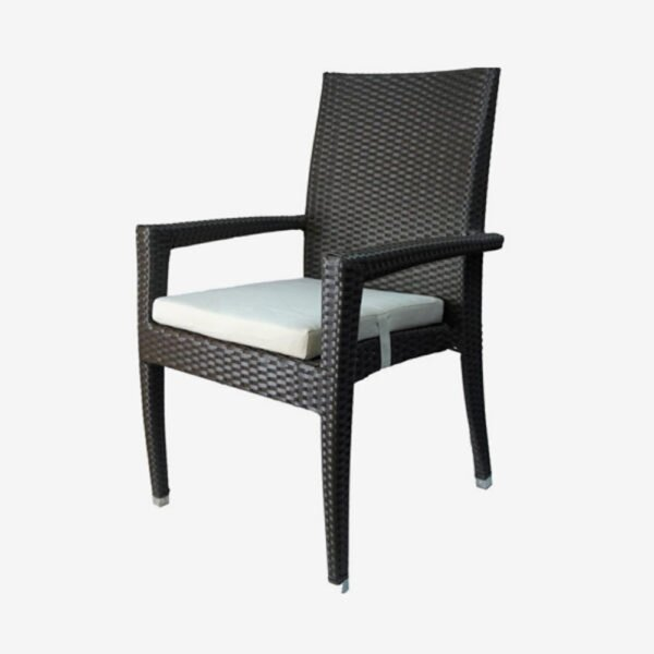 Venice Patio Dining Chair with Cushion by Feruci Feruci
