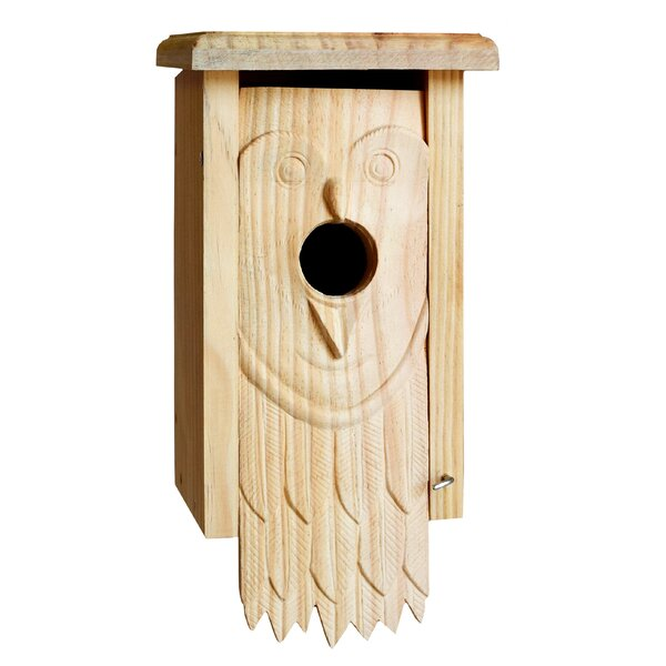 Owl Carved 13 in x 7 in x 6 in Birdhouse by 1000 West Inc