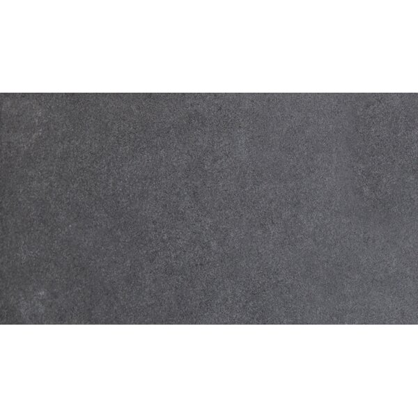 Graphite 24 x 48 Porcelain Field Tile in Gray by MSI