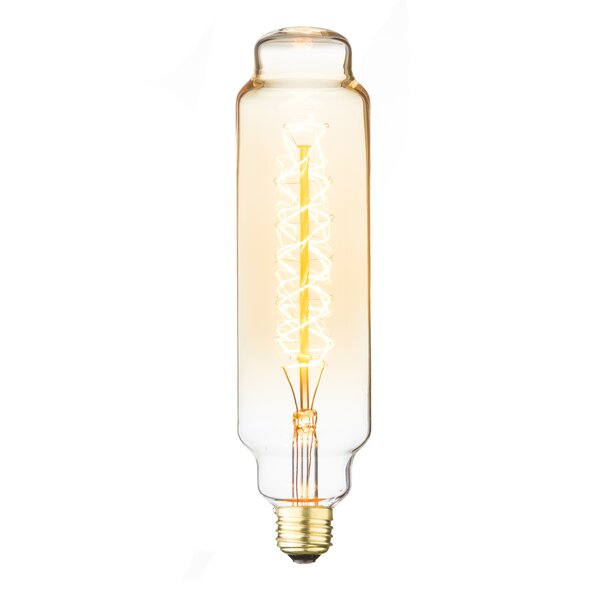 60W Amber E26 Incandescent Edison Stick Light Bulb by String Light Company