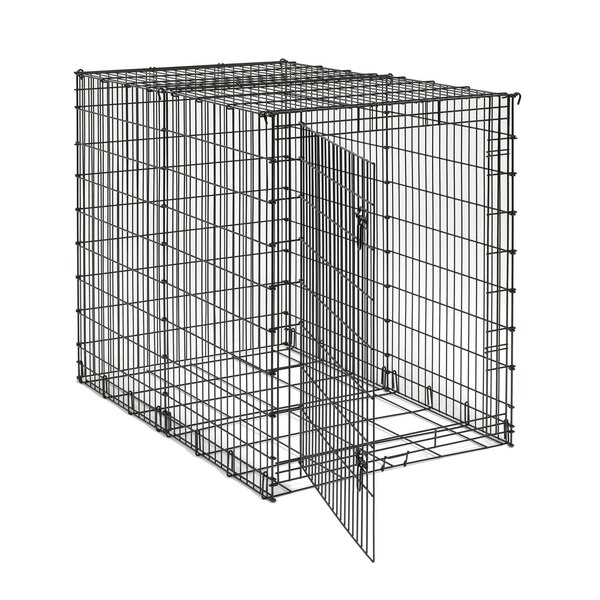 Big Dog Crate by Midwest Homes For Pets