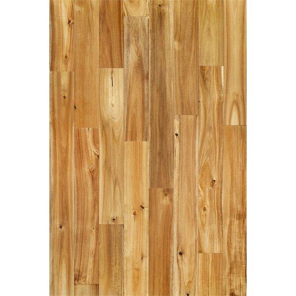 Annette 3-3/4 Solid Acacia Hardwood Flooring in Chai Beige by Welles Hardwood