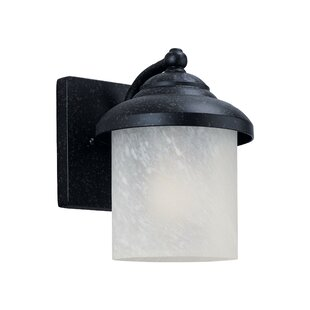 Affordable Nicollet 1-Light Outdoor Sconce By Bloomsbury Market