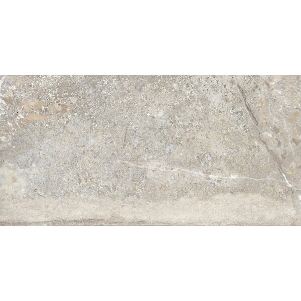 Vstone 19 x 38 Porcelain Field Tile in Nut Matte by Tesoro