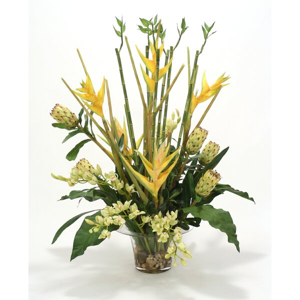 Waterlook® Silk Orchids, Protea, Heliconia and Bamboo in Rimmed Vase by Distinctive Designs