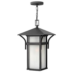 Best Choices Harbor 1-Light Outdoor Hanging Lantern By Hinkley Lighting