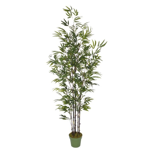 Dany Artificial Bamboo Tree by Bayou Breeze