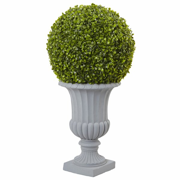 Allison Boxwood Topiary in Urn by Nearly Natural