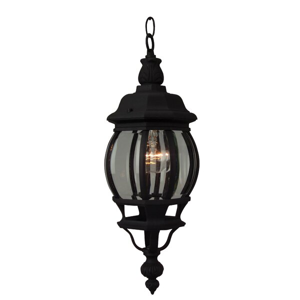 Oakhill Pumpkin Outdoor Pendant by Charlton Home