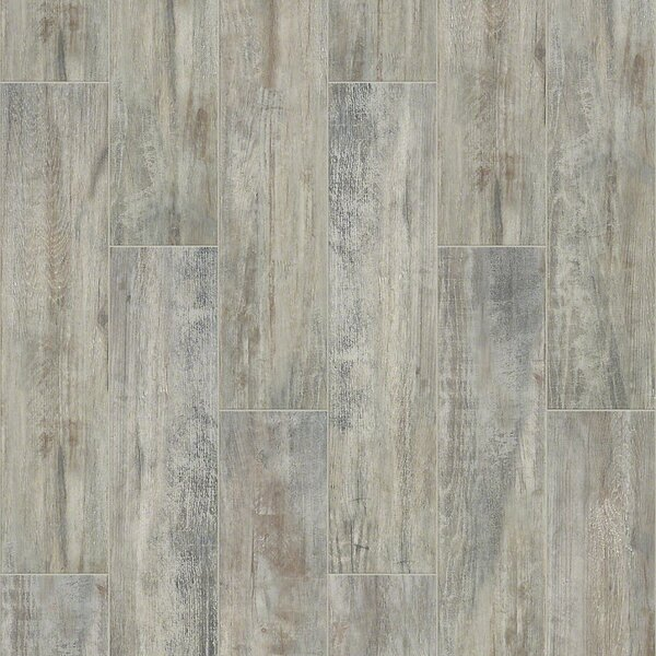 Celestial Plank 8 x 36 Ceramic Field Tile in Ash by Shaw Floors
